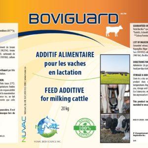 Additif alimentaire bio pour vaches en lactation - Boviguard
